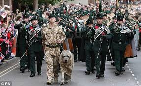 http://www.dailymail.co.uk/news/article-1077642/One-soldier-dog-lead-homecoming-parade-Irish-Guards-march-home-town.html?ITO=1490